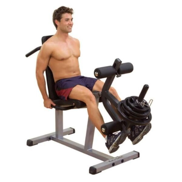 Body Solid Seated Leg Extension and Supine Curl