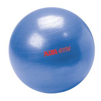 AIBI GYM Gym Ball