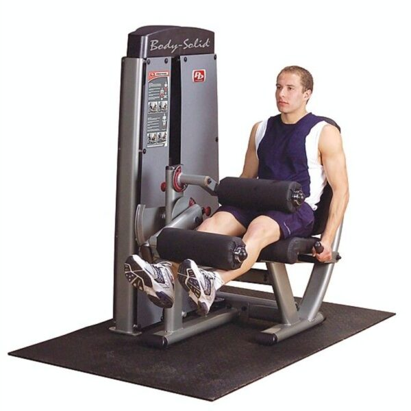 Pro Dual Leg Extension and Curl Machine