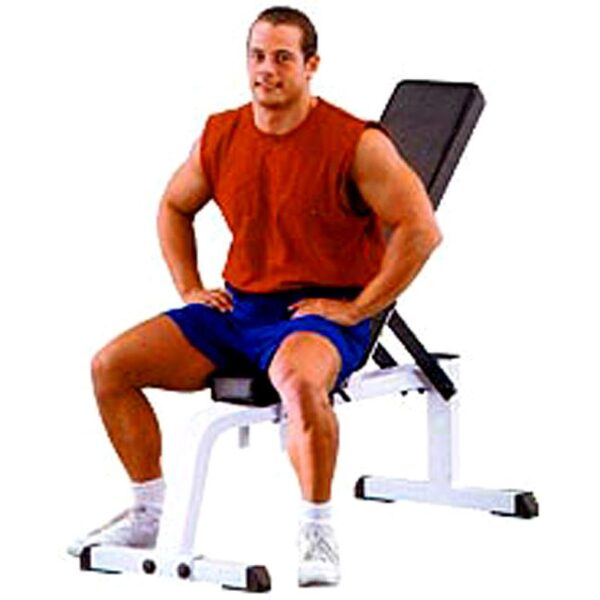 Body Solid Fully Commercial Flat/Incline Bench WFI 21