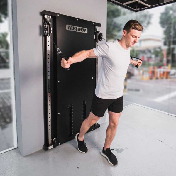 AIBI Gym wall functional trainer wft1.2 cable cross demo